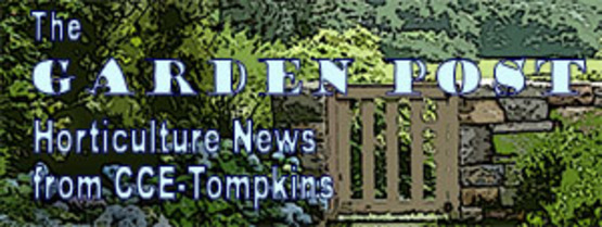 graphic for Garden Post enewsletter publication