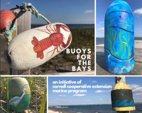 buoys for the bays - small