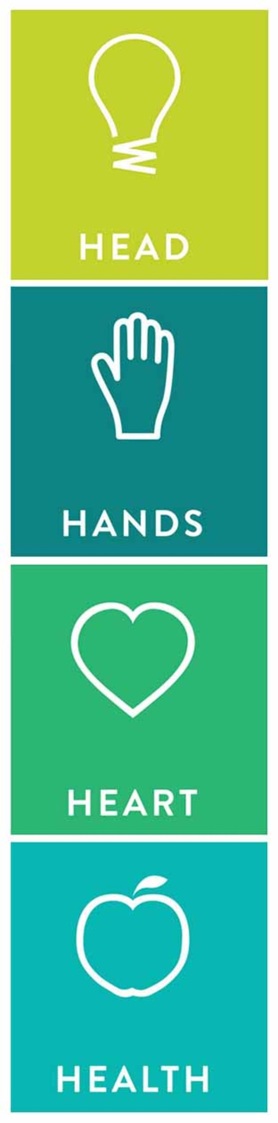 head hands heart health sidebar graphic
