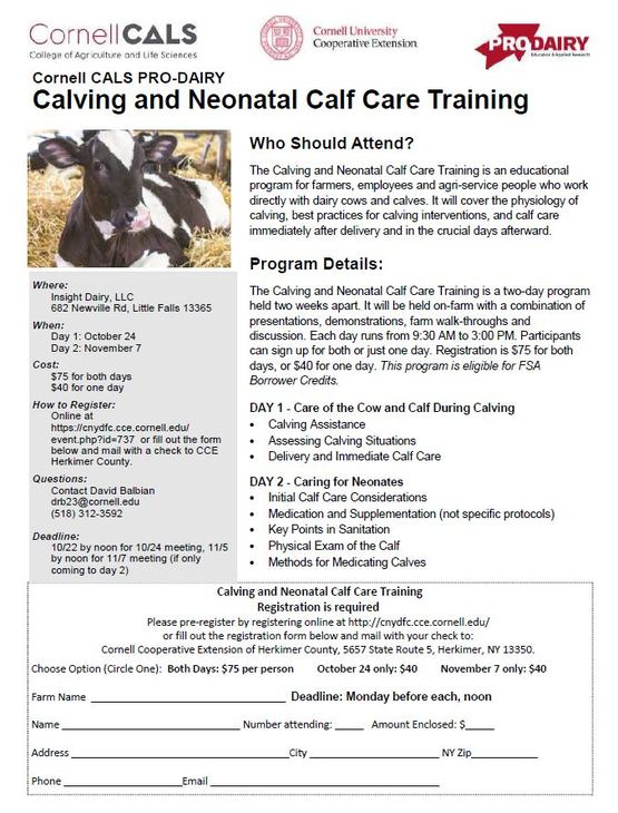 Cornell Cooperative Extension | Calving and Neonatal Calf