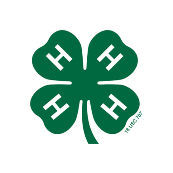 Official 4-H clover icon scaled to medium size in field.