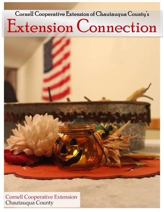 Extension Connection November 2018