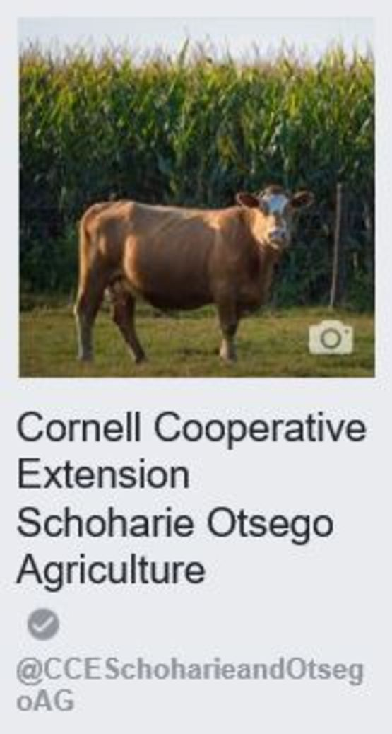 Facebook - CCE Schoharie/Otsego Ag
