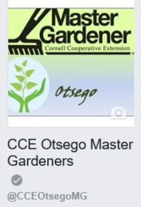 Facebook - CCE Otsego MG