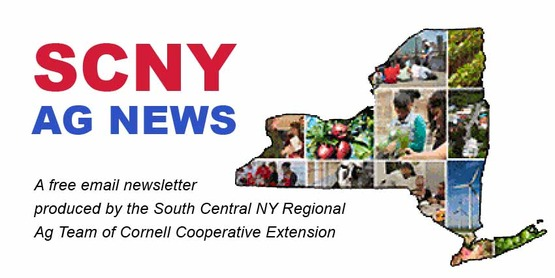 Banner image for SCNY Ag News page