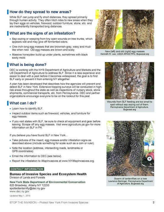 Spotted lanternfly fact sheet page 2