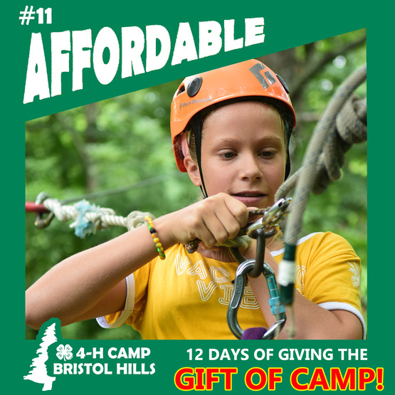 Giving the Gift of 4-H Camp: Affordable