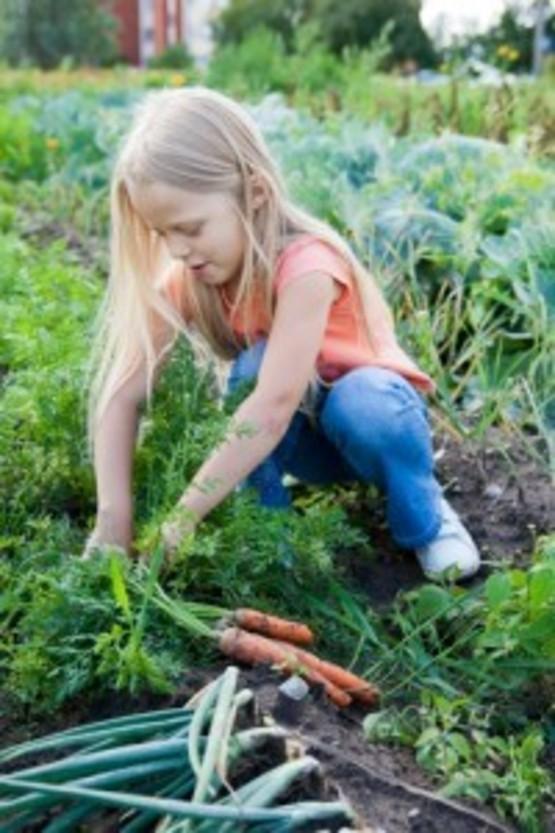 Girl digging