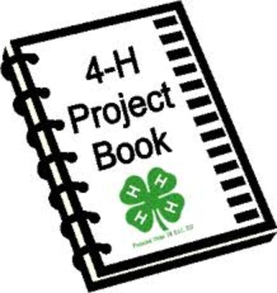 Image result for 4-H project clip art