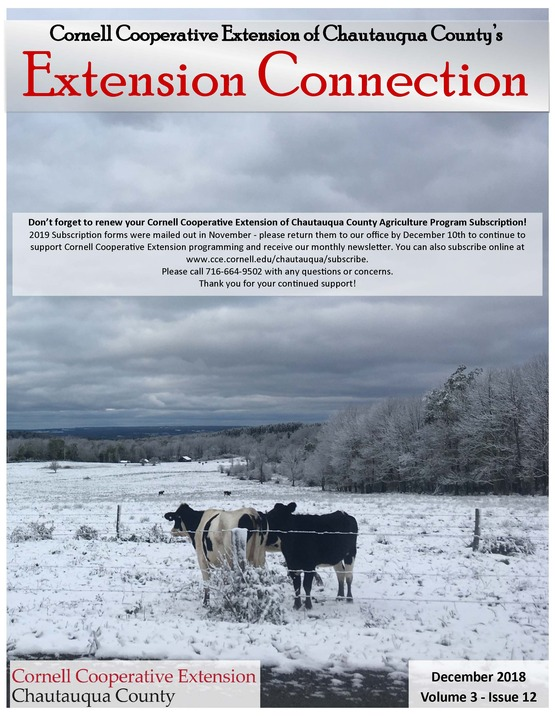 Extension Connection December 2018