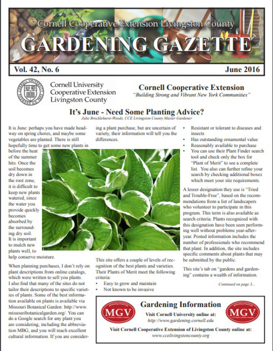 Gardening Gazette Sample Publication