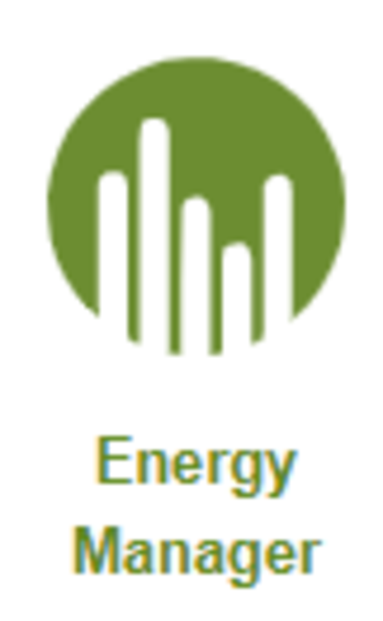 energy manager icon