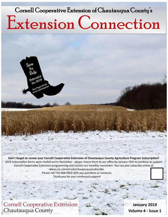 Extension Connection January 2019