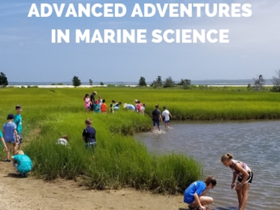 SAMC Advanced Adventures in Marine Science