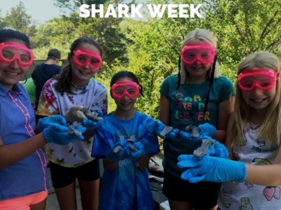 SAMC Shark Week