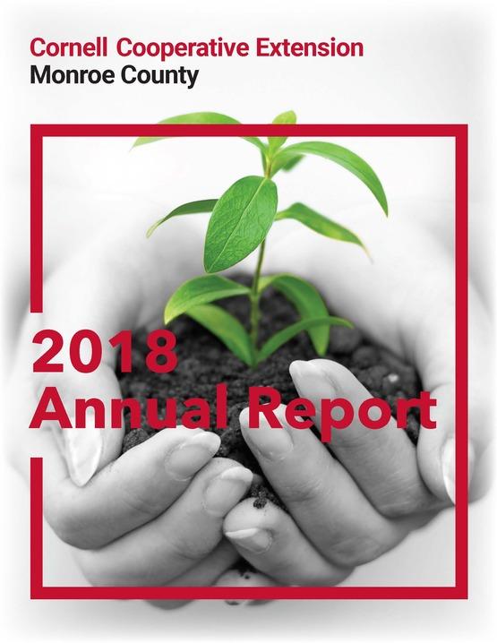 2018 CCE-MC Annual Report