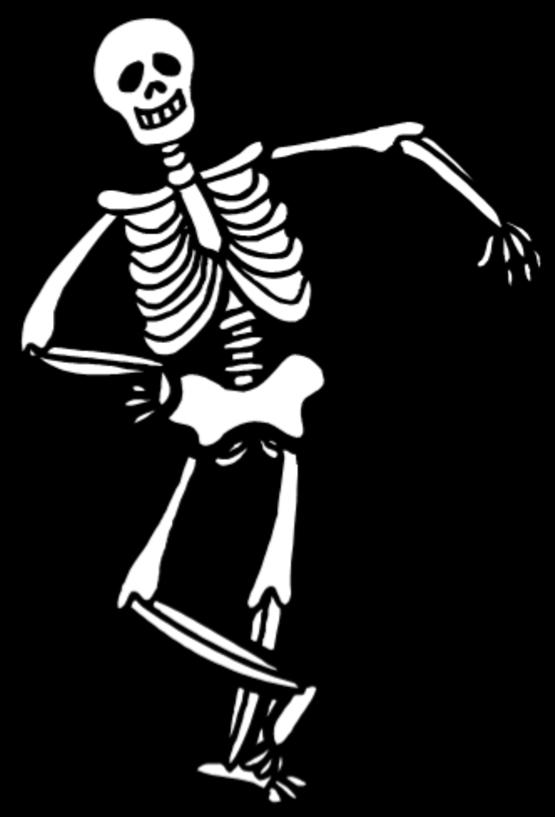 Bone Builders Skeleton