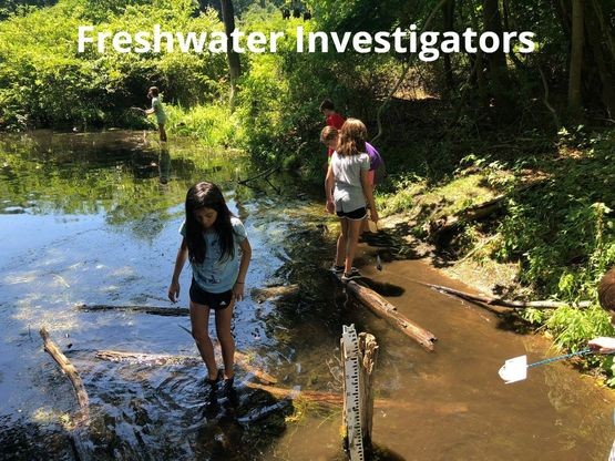 SSMC Freshwater Investigators