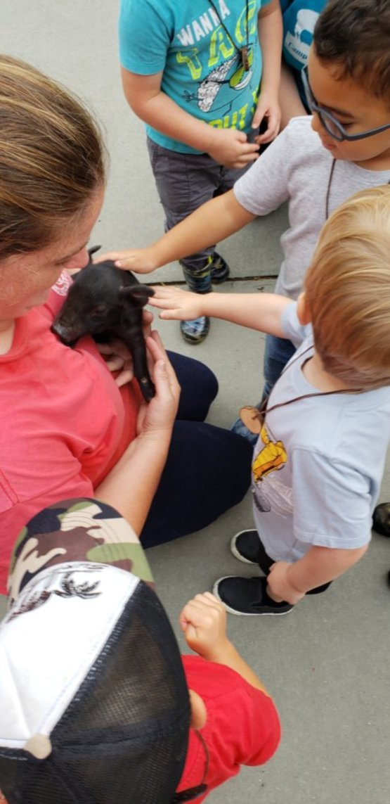 young boys petting a piglet being held by one of our farm educators
