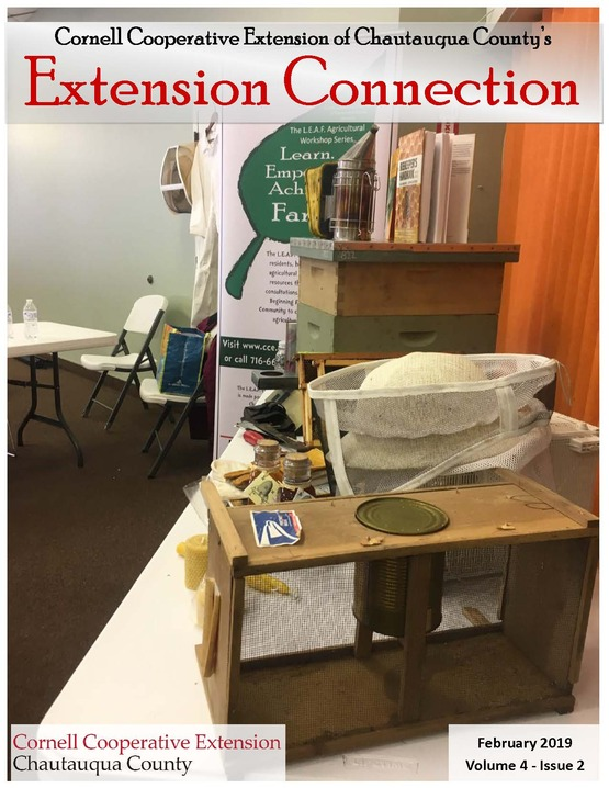Extension Connection February 2019