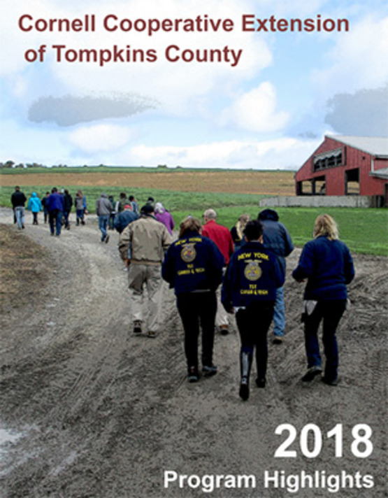 cover image of the 2018 Annual Report