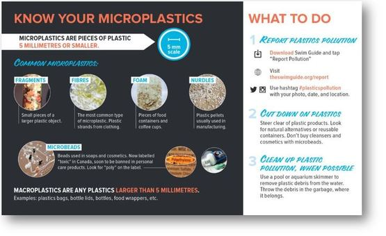 Know your microplastics