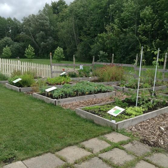 Cornell Cooperative Extension Vegetable Garden Basics