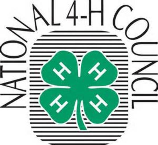 4-H National Council