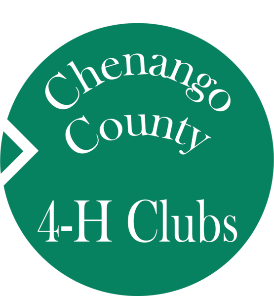Chenango County 4-H Club's Button