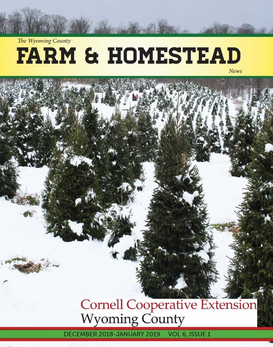 Farm and Homestead December 2018-January 2019 cover