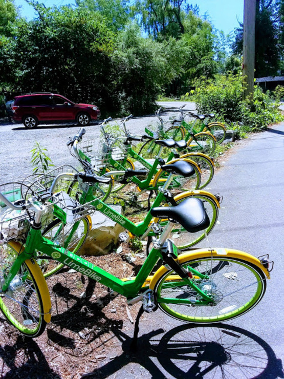 LIME bikeshare accessedible in Ithaca
