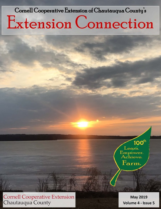 Extension Connection May 2019