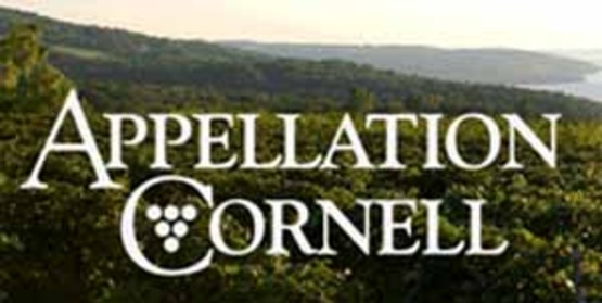 Logo for sidebar use, Appellation Cornell, at 