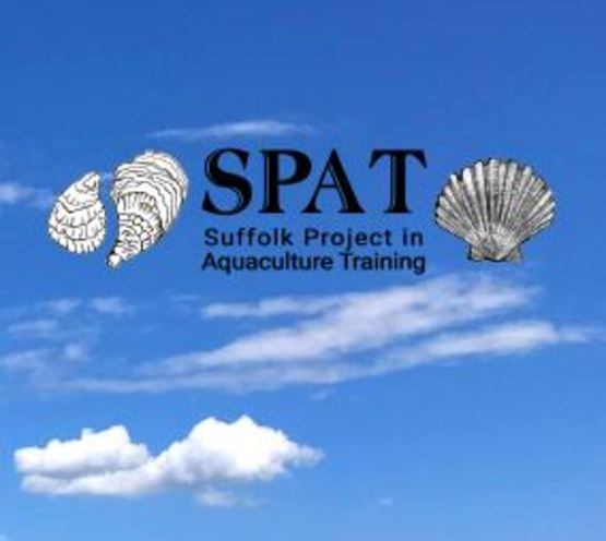 SPAT brochure link photo