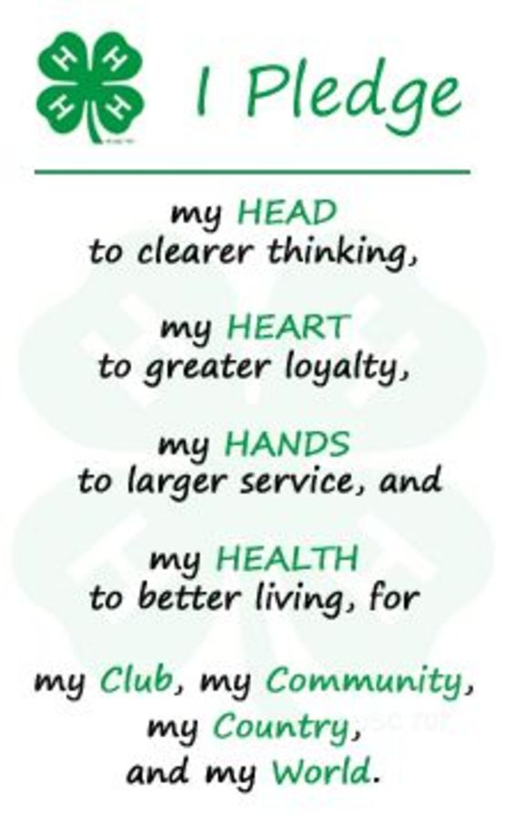 the 4-H pledge in full