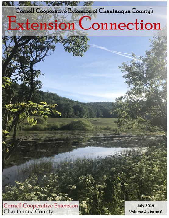Extension Connection July 2019