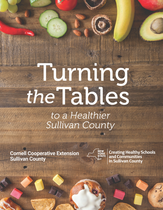Turning the Tables to a Healthier Sullivan County CHSC book cover