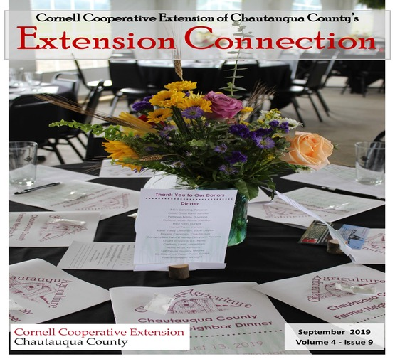 Extension Connection September 2019