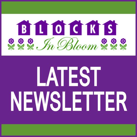 Blocks in Bloom 2019 Summer Newsletter