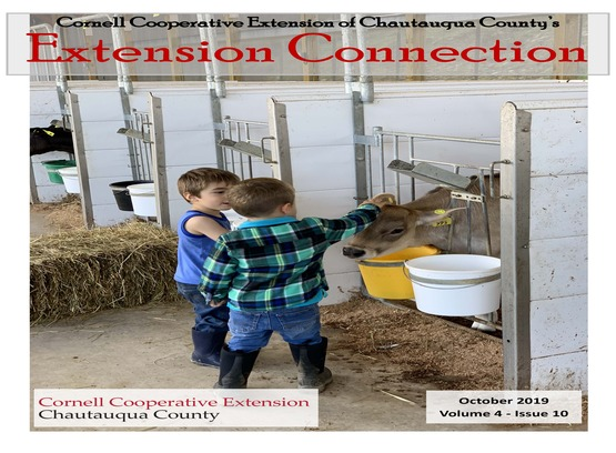Extension Connection October 2019