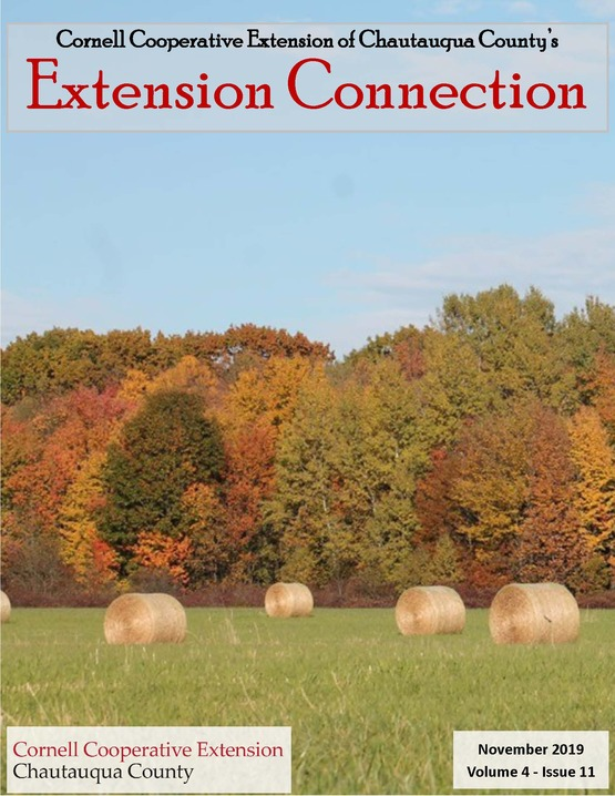 Extension Connection November 2019