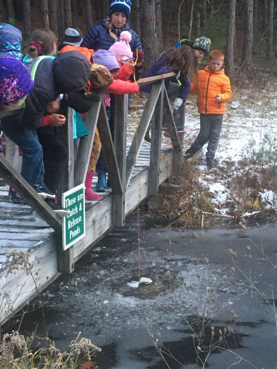 Students take turns lowering the secchi disk into the pond