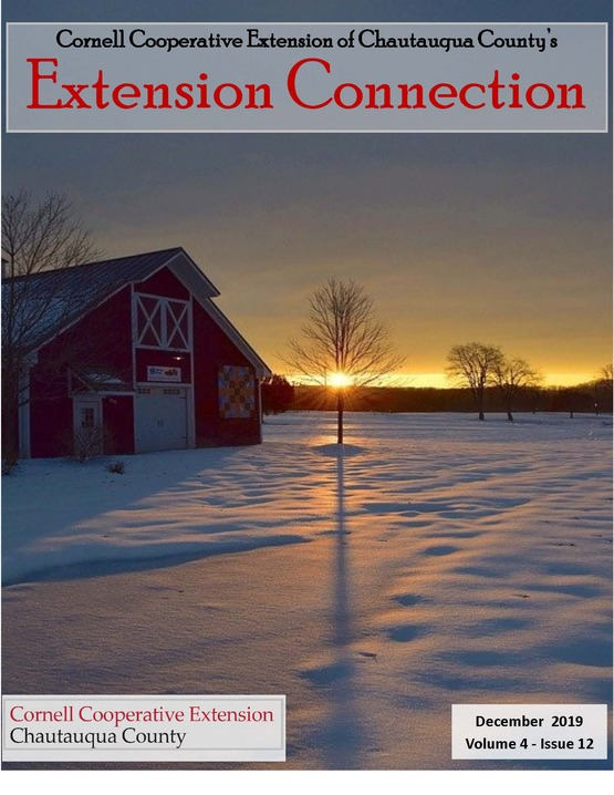 Extension Connection December 2019