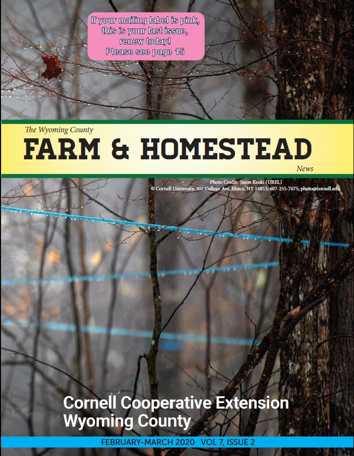 Farm and Homestead February-March 2020