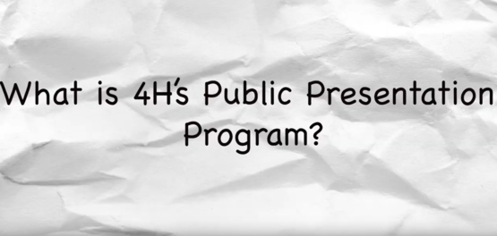 what is the 4-h public presentations program?