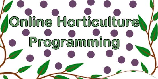 Online Hort Programming