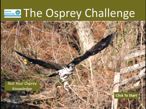 Osprey Quiz