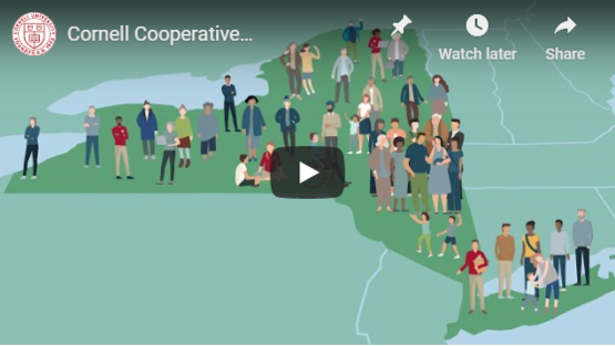 "Watch CCE:"" Helping New Yorkers Thrive"