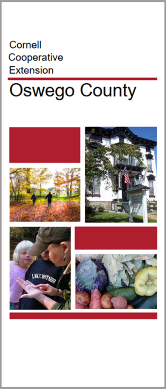 download the CCE-Oswego general brochure