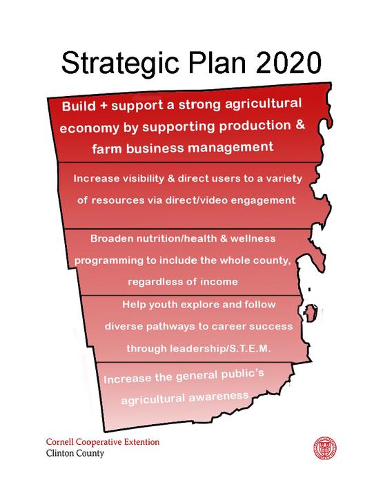 Strategic Plan Large Image